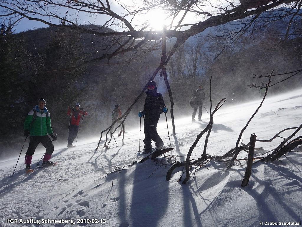 Schnuppertour: Schneeschuh-Wanderung